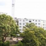 フローラ桂台8号棟 バルコニーからの眺望