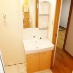 県ドリームハイツ9号棟806号室 洗面化粧台(内装)