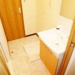 県ドリームハイツ9号棟806号室 洗面室(内装)