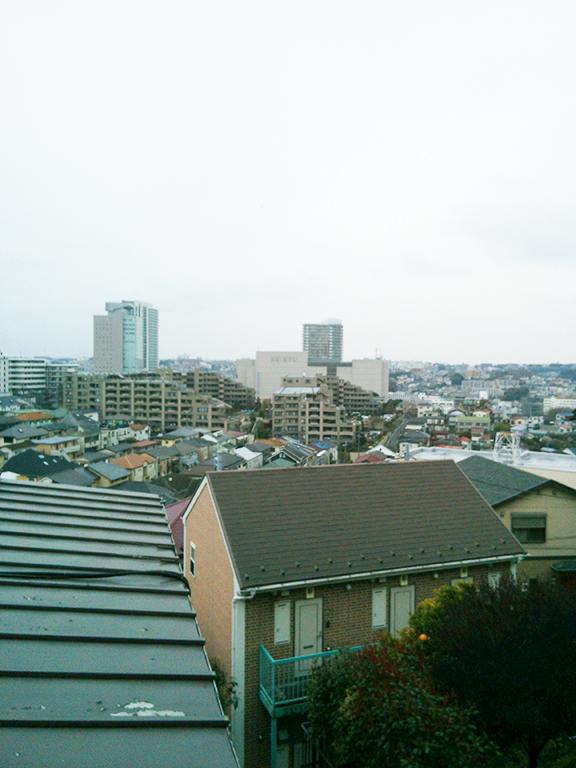 蜂巣ブログ写真平成28年3月25日