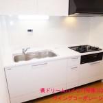 県ドリームハイツ15号棟103号室キッチン