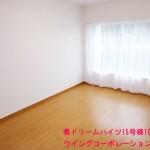 県ドリームハイツ15号棟103号室洋室