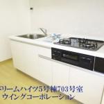 県ドリームハイツ5号棟703号室キッチン