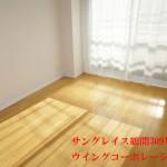 サングレイス鶴間309号室南側洋室