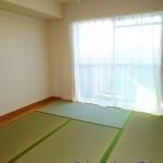 サニーヒル今宿6号棟206号室和室