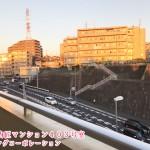 むかって左は川崎市、右側は横浜市!