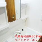 平塚高村団地30号棟404号室洗面化粧台