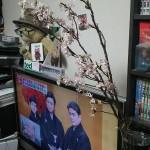 ブログ画像3月30日三好