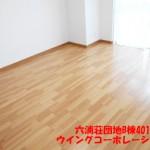 六浦荘団地B棟401号室洋室2