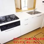 グランイーグル鶴ヶ峰ヒルズ105号室キッチン