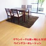 グランイーグル鶴ヶ峰ヒルズ105号室リビング
