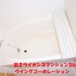 第2ライオンズマンション306号室ユニットバス