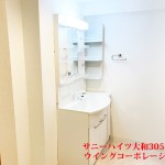収納も付いている広めな洗面室(内装)