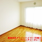 湘南長沢グリーンハイツ8-2号棟201号室洋室