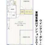 東建多摩川マンション304号室間取図
