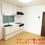 スターハイツ梶ヶ谷301号キッチン