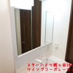 スターハイツ梶ヶ谷301号洗面化粧台