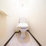 トイレ新規交換、保温洗浄便座新規取付(内装)