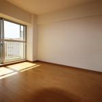 伊勢原グリーンマンション1番館902号室洋室