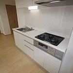 パークサイドレジデンス312号室キッチン
