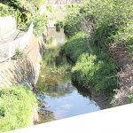 近所にある小川。静かで暮らしやすい環境です