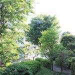 バルコニーからの眺望は、緑が眺めます