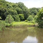 有名な久良岐公園も近いです