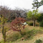 大森貝塚遺跡庭園の緑がバルコニーから望めます