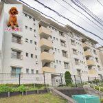 宮向団地1-2号棟103号室【売主直売】