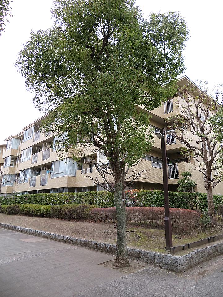 金沢シーサイドパークハイツ3-12号棟外観3