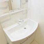 広くて使いやすそうな洗面化粧台(内装)