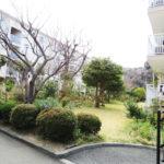 敷地内は緑が多く閑静な住宅街です