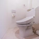 トイレも新しく交換済み。温水洗浄便座付き、コーナーに収納も付いていて便利です(内装)