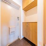 玄関のシューズボックス新設、フロアタイルも張替え済みです。(玄関)