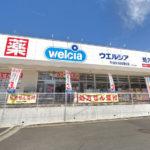 ウエルシア六会日大前駅東口店500m(周辺)