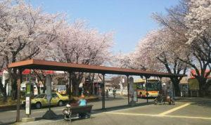 11桜ヶ丘駅2