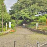 少し足を延ばすと(1km位)大きな岡村公園もあります(周辺)