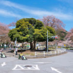 根岸公園(交通公園)68m マンションの向かいが公園になっていて住環境良好(周辺)