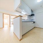 アーバンヒルズたまプラーザ502号室キッチン2