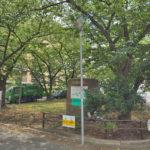 マンションの前は緑地になっていて住環境良好(周辺)