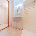 新規交換した洗面化粧台はシャワーヘッド付き(内装)