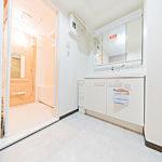 三面鏡と収納棚付きの洗面化粧台(内装)