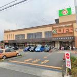 ライフ上鶴間店800m(周辺)