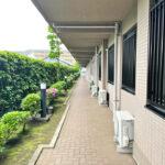 お部屋にかけての共有廊下。管理体制良好で、植木もきれいにお手入れされています。