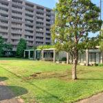 管理体制良好。敷地内には中庭があり緑がきれいです。
